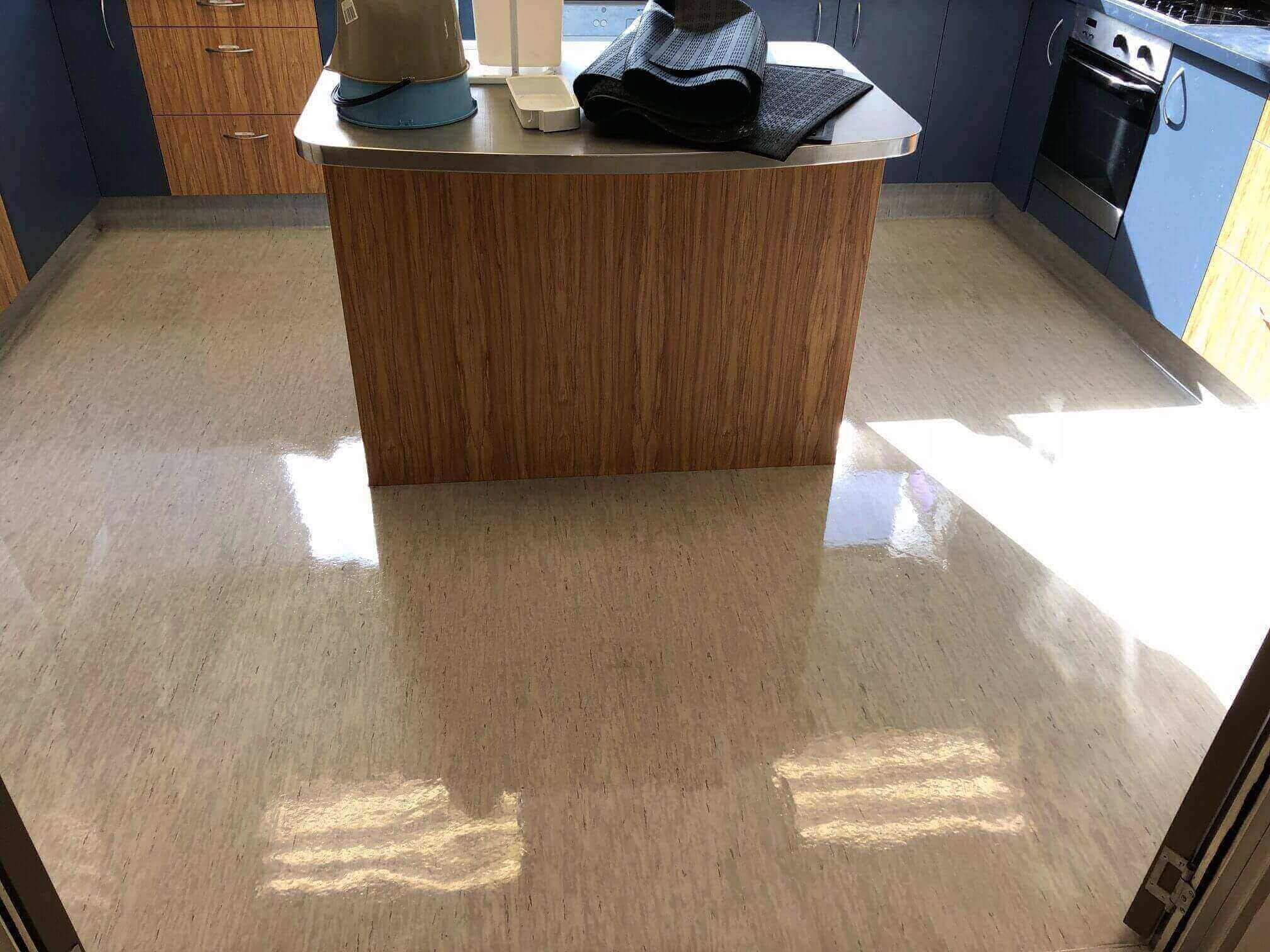 Vinyl Flooring Service : Vinyl floor polishing